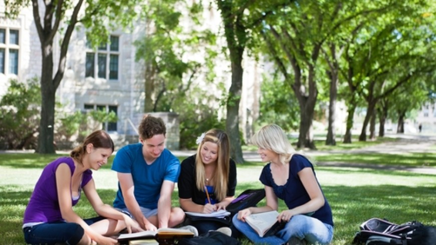 How to use group study sessions to your advantage