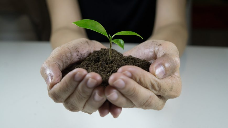 Is sustainability achievable in Australian hospitality?